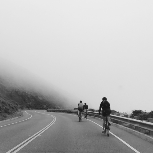 cyclists on a foggy road